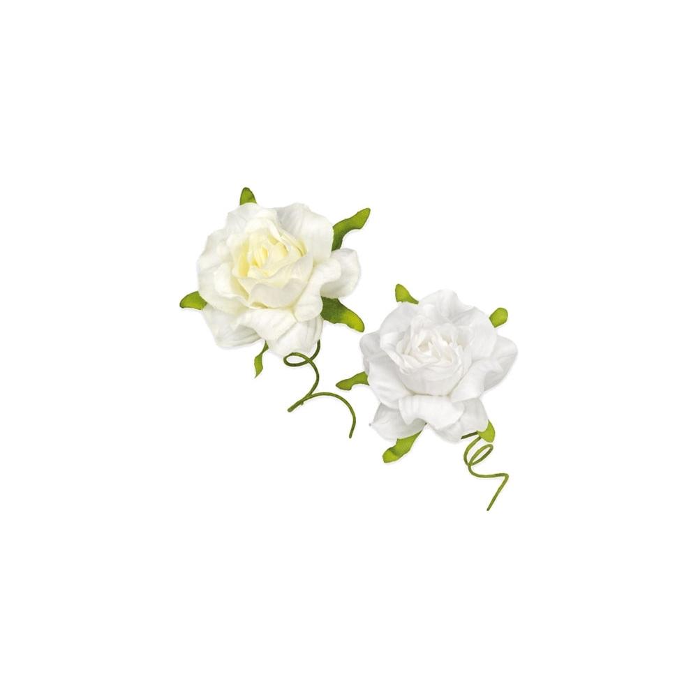 Rosellina media sfumata (36 pezzi)