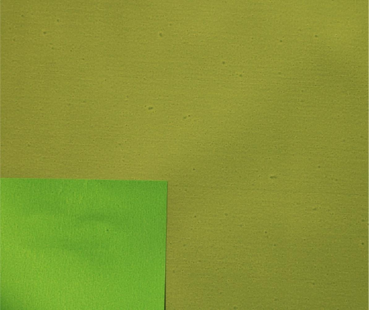 Carta polipropilene bicolor