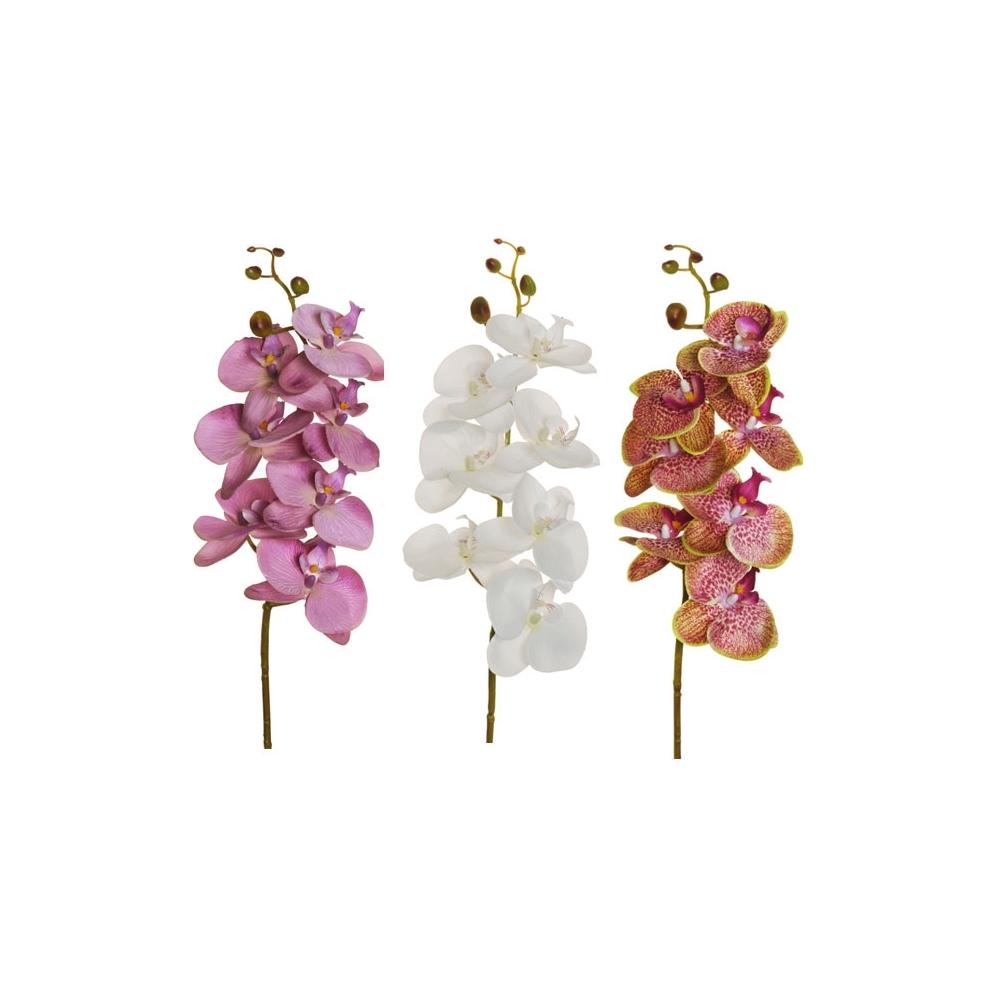Ramo fiori di orchidea