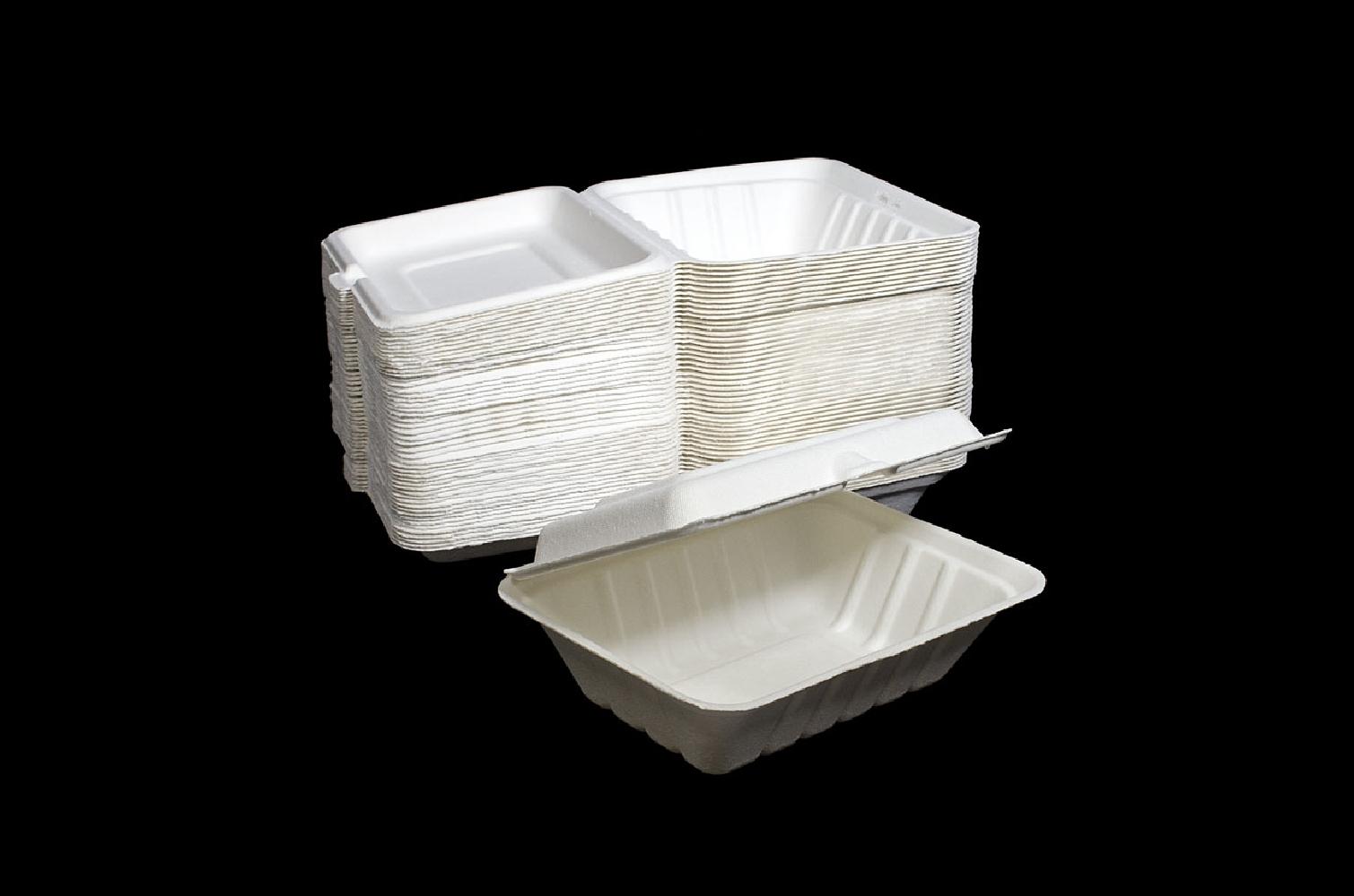 Box eco in bagassa (50 pezzi)