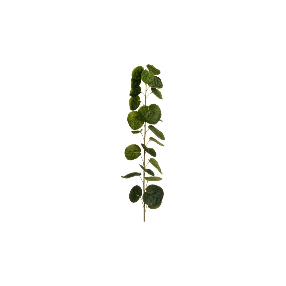 Fascio di foglie