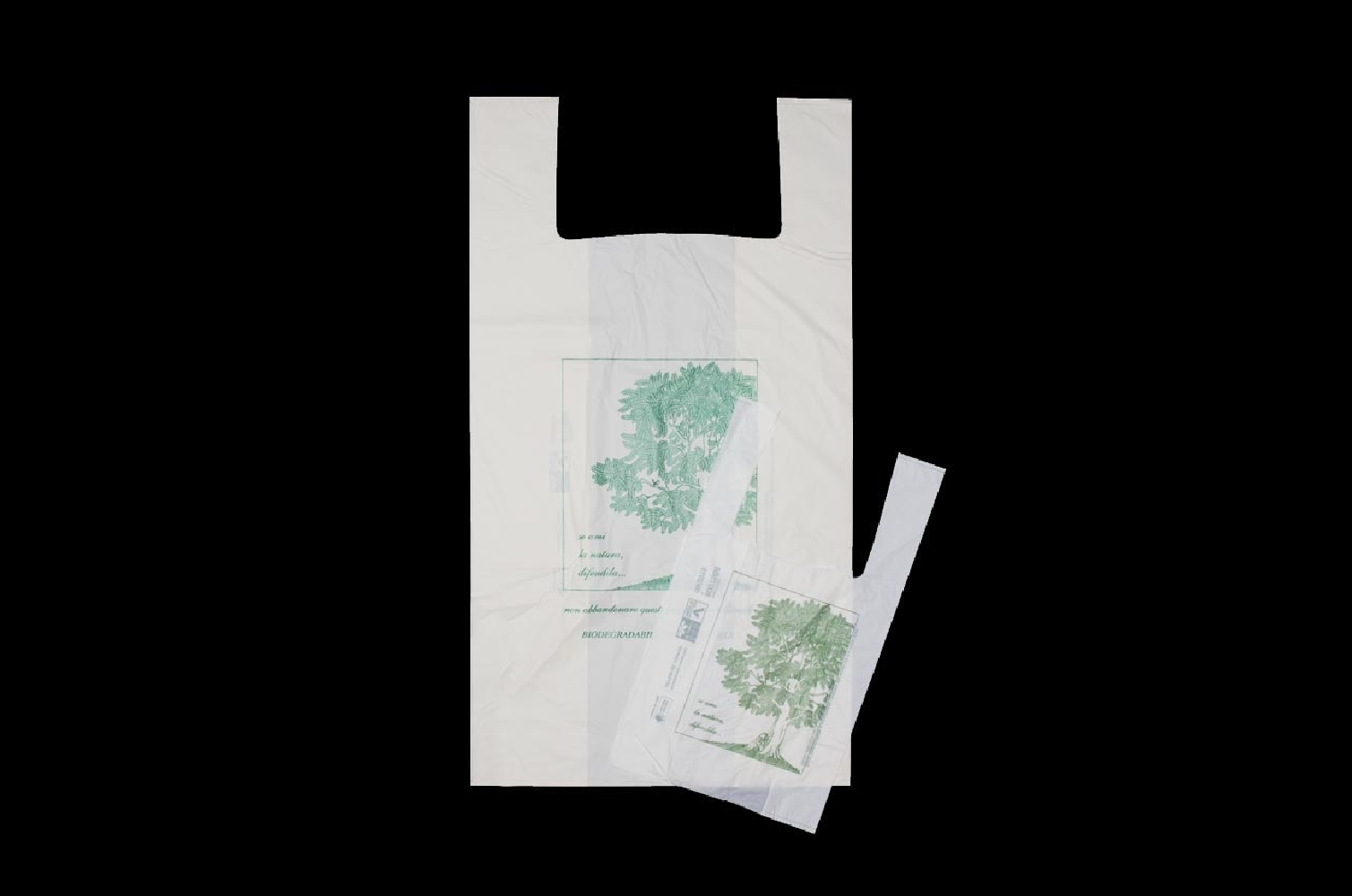 Shopper biodegradabili 30x60cm (500 pezzi)