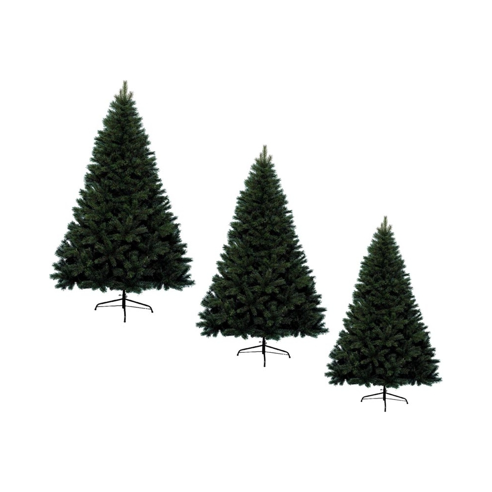 Albero natale canada spruce