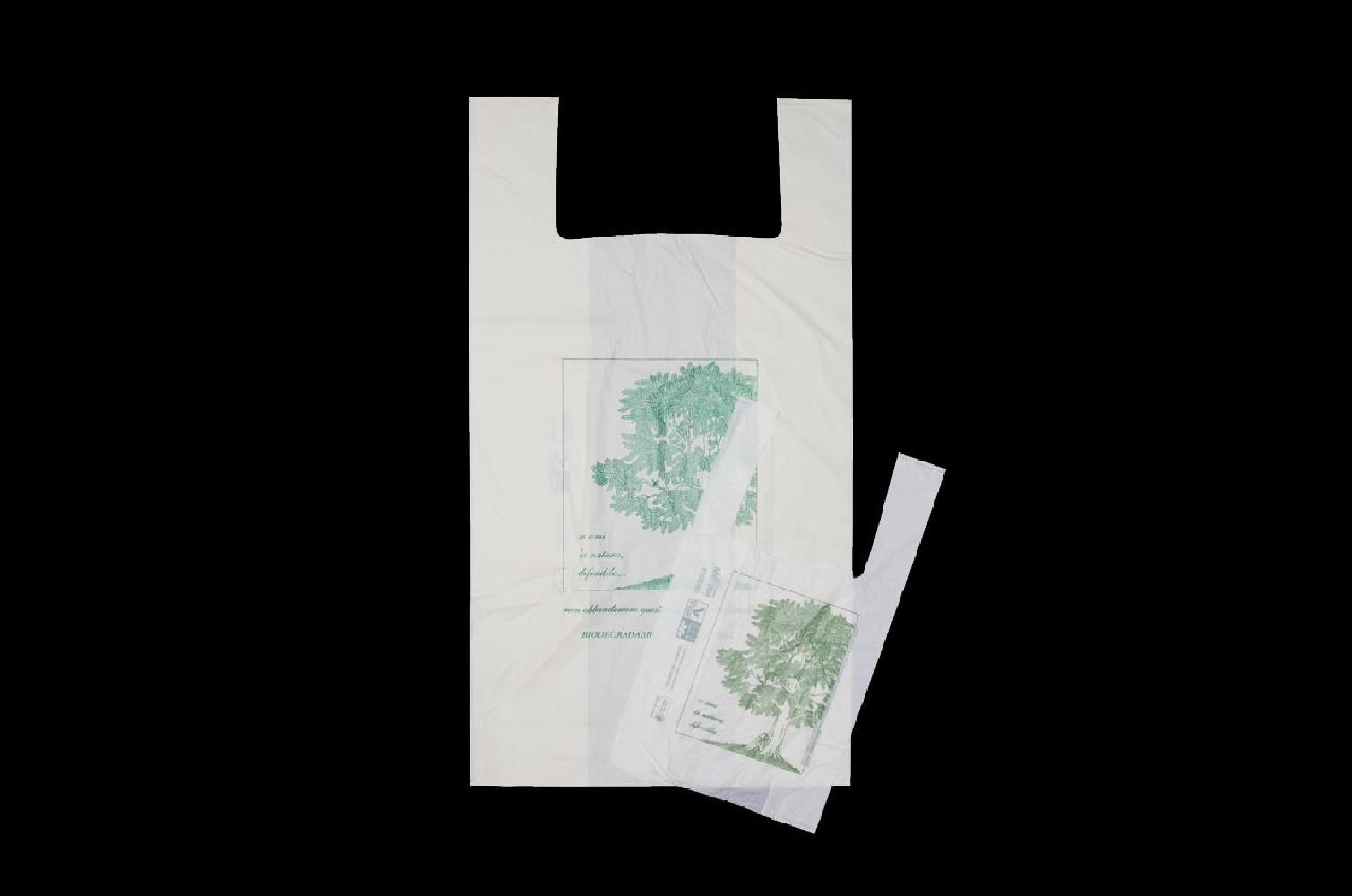 Shopper biodegradabili 27x50cm (500 pezzi)