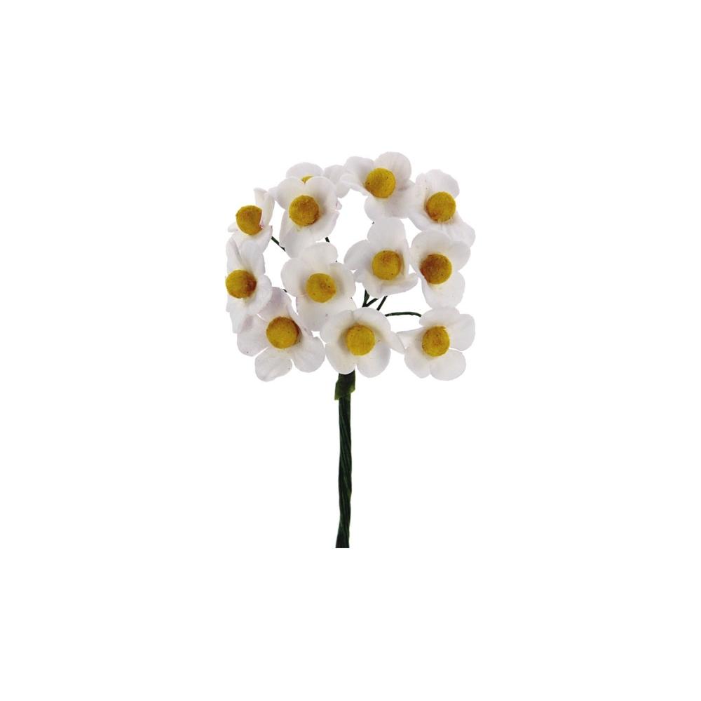 Fiorellini di fragola (72 pezzi)