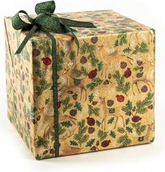 Carta velina da regalo con fantasia foresta in confezione da 25 fogli