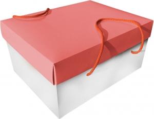 scatola porta colomba da 1 kg bicolore