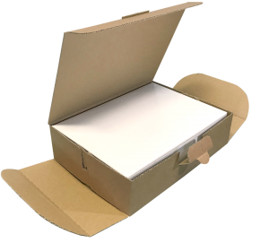 delivery box in cartoncino