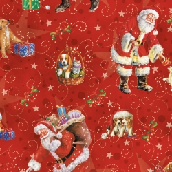 Carta da regalo Babbo Natale classico in confezione da 25 fogli