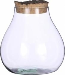 Terrarium in contenitore in vetro