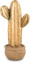 Cactus magnesia