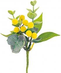 Pick con mimosa gialla (12 pezzi)