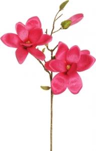 Ramo di magnolia fuxia