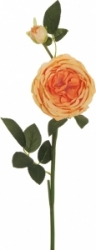 Ramo di rosa arancione