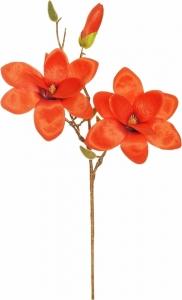Ramo di magnolia arancione
