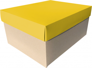 scatola per colomba da 750gr realizzata in cartone reciclato
