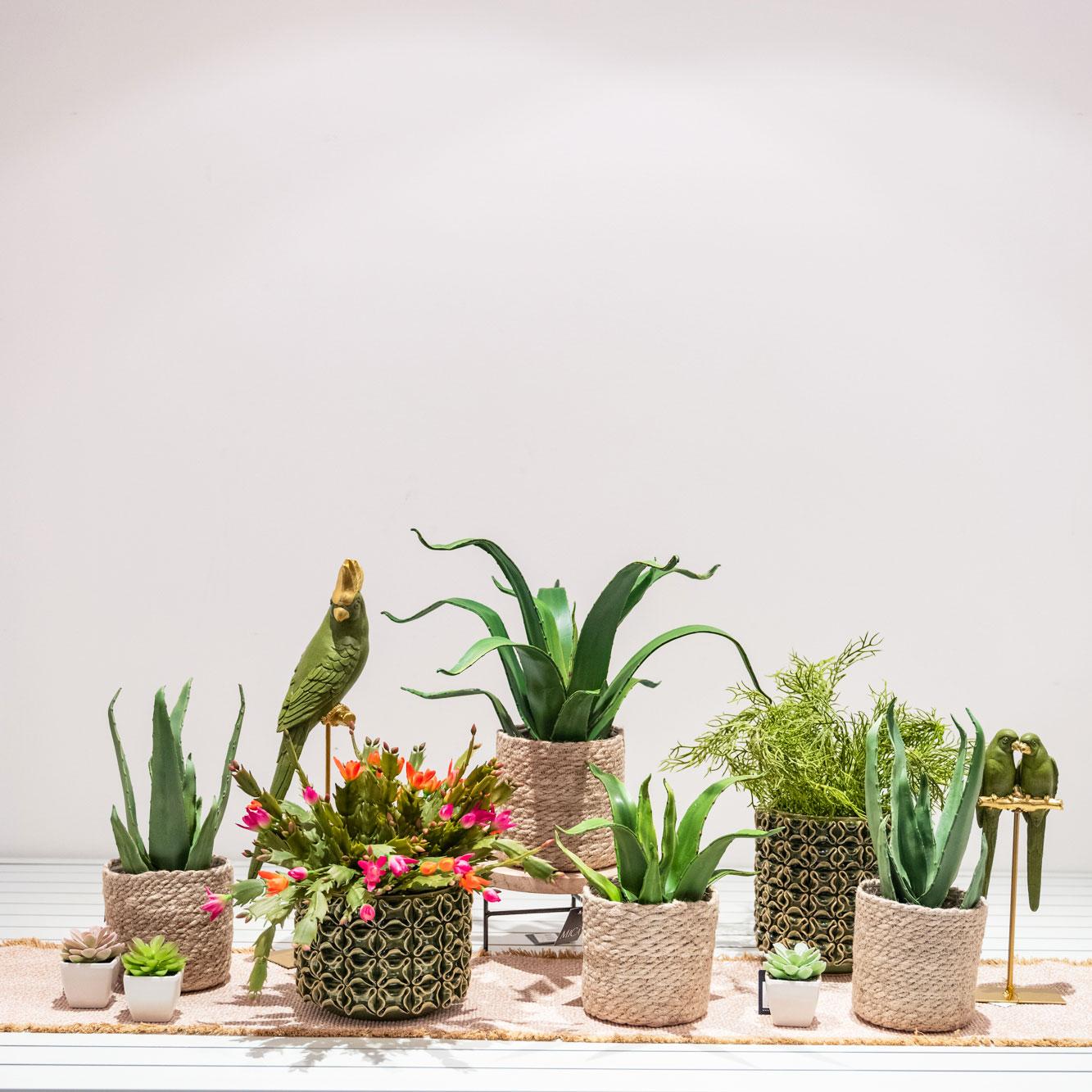 incartare_piante-fiori-finti_allestimenti-vetrine